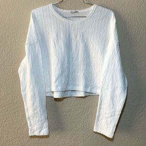 Zara Long Sleeve Scoop Neck Cropped Top